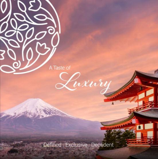 TTNG Luxury Magazine